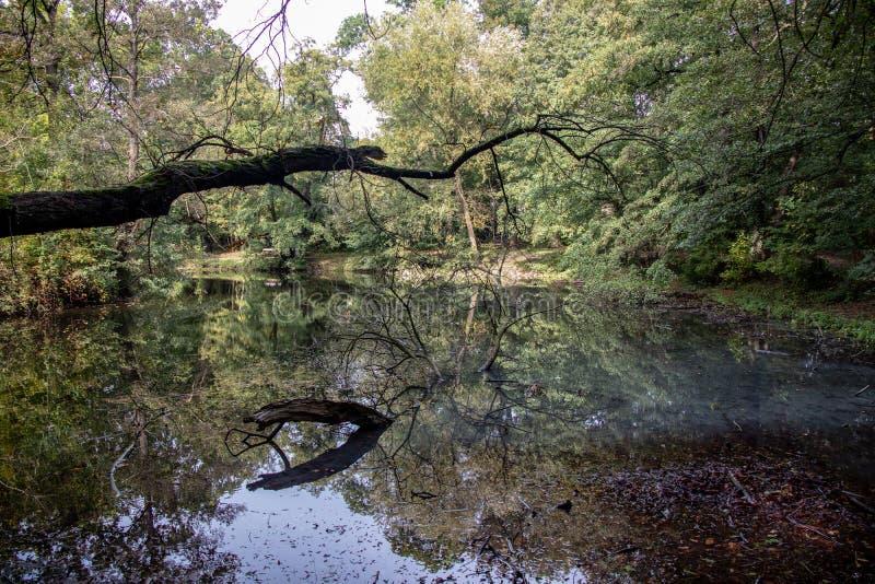 Synpunkter från den historiska Abtnaundorfer-parken i Leipzig, Tyskland royaltyfri foto
