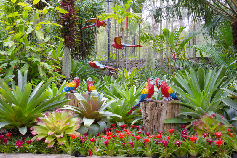 The Synthetic Parrot As Garden Decoration In Nong Nooch ...