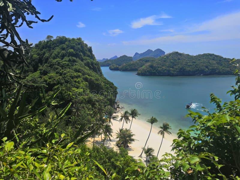 Synvinkel för växter för fartyg för landskap för hav för vatten för palmträd för strand för madsom för koh för samui för öThailan royaltyfria foton
