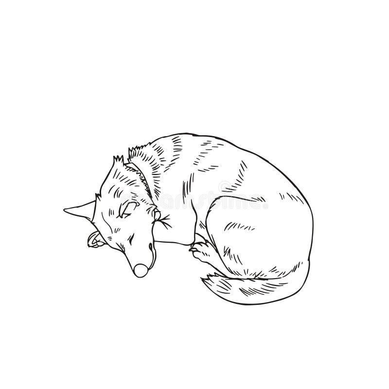 Sypialny Psi kontur ilustracji