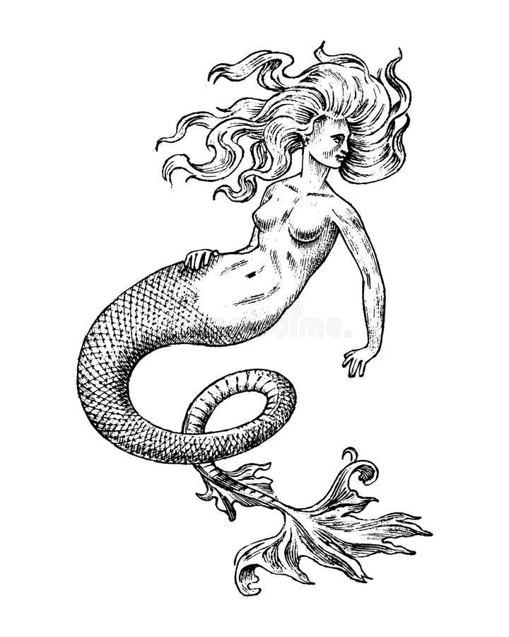 Syrenki kobieta Denna syrena Antykwarski Mityczny Grecki potwór Mitologiczny zwierzę Oceanu symbol Fantastyczne istoty w royalty ilustracja