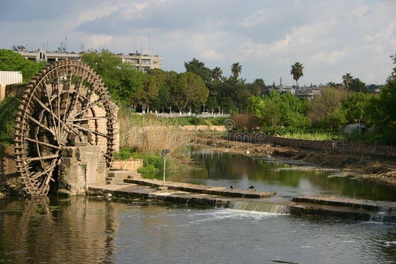 syria royaltyfri foto