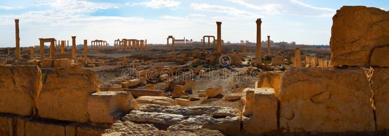 syria palmyra royaltyfri foto