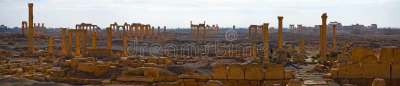 syria palmyra arkivbilder