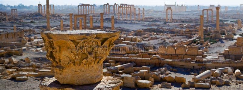 syria palmyra arkivfoton
