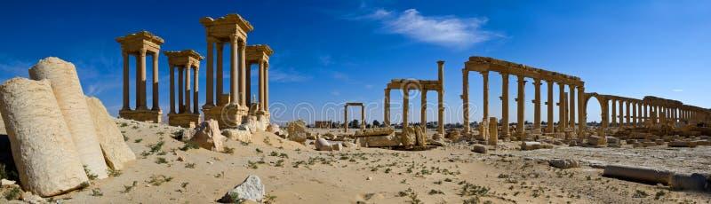 syria palmyra royaltyfria bilder