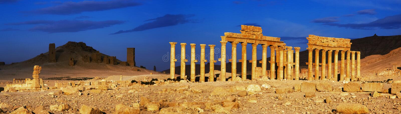 syria palmyra arkivfoto