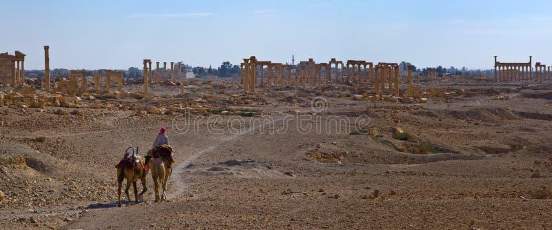 syria palmyra royaltyfri fotografi