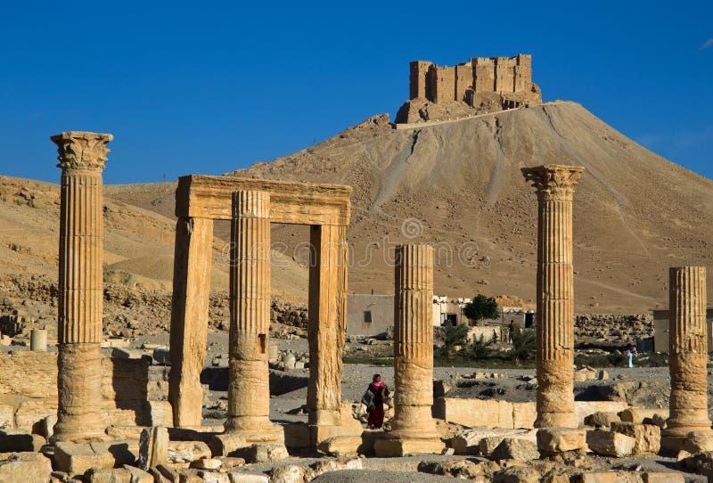 syria palmyra obrazy royalty free