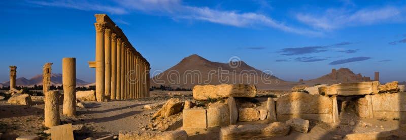 Syria . Palmyra. royalty free stock photo