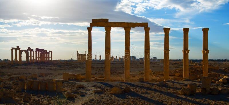 Syria . Palmyra stock images