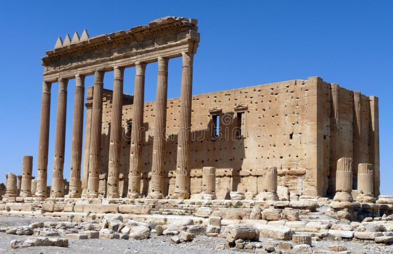 Syrien - Palmyra arkivbild