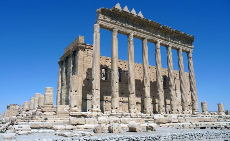 Syrien - Palmyra royaltyfria foton
