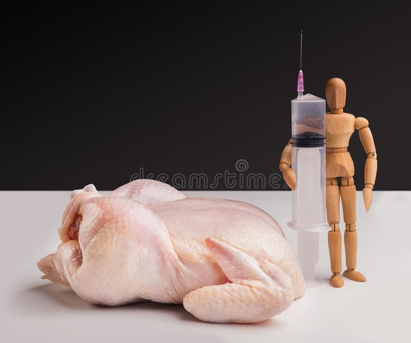 Syringe and raw chicken isolated royalty free stock photo