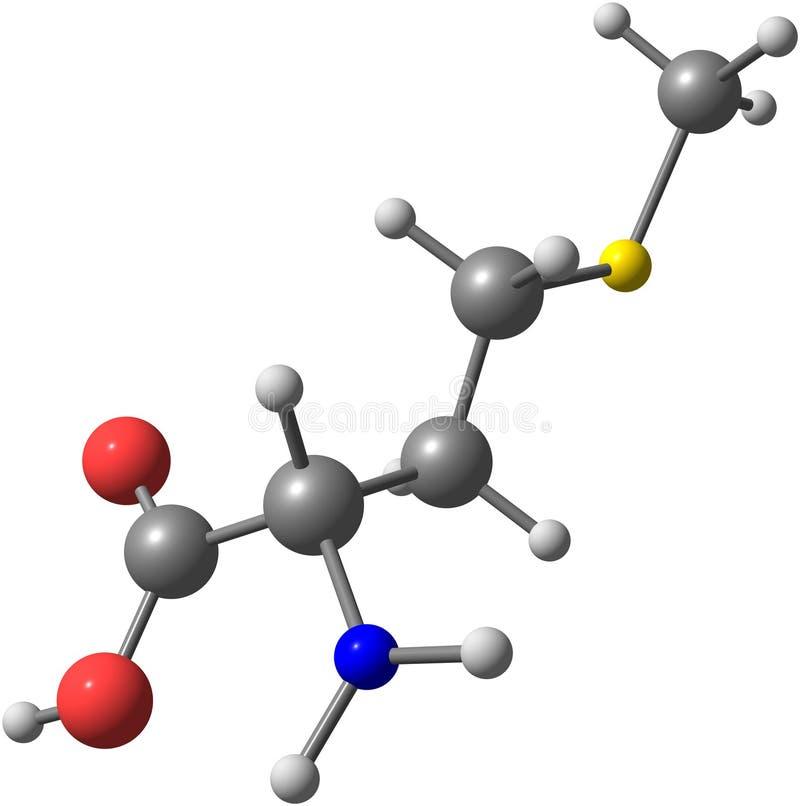 Syrlig molekyl för Methionine som isoleras på vit royaltyfri illustrationer