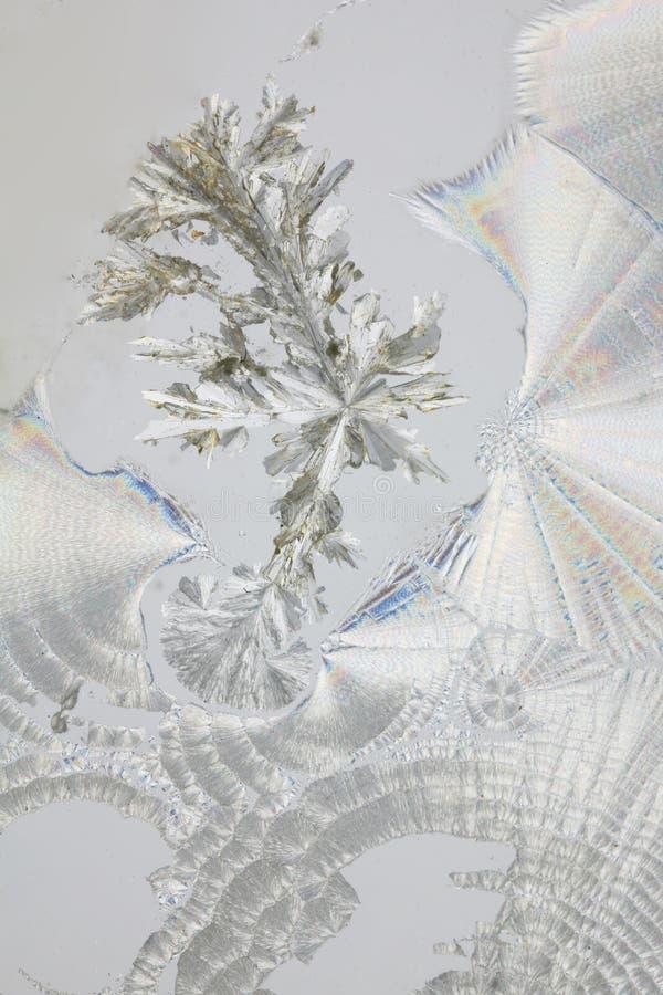 syrliga ascorbic kristaller arkivfoton