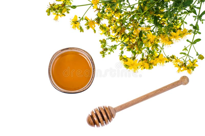 Syrup and honey from medicinal plants. Studio Photo stock image