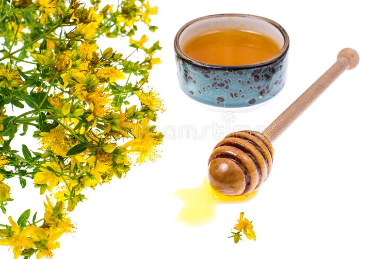 Syrup and honey from medicinal plants. Studio Photo stock photos