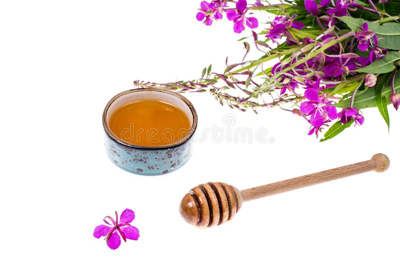 Syrup and honey from medicinal plants. Studio Photo royalty free stock photo