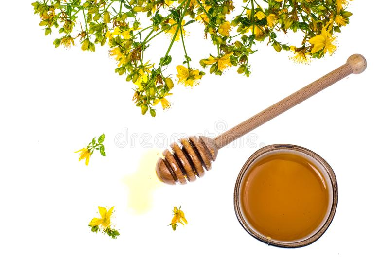 Syrup and honey from medicinal plants. Studio Photo royalty free stock image