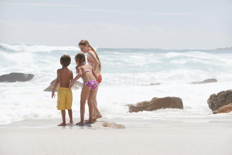 Syskon som spelar på stranden arkivfoton