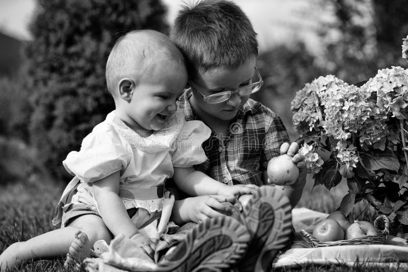 Syskongrupp på picknick royaltyfri bild