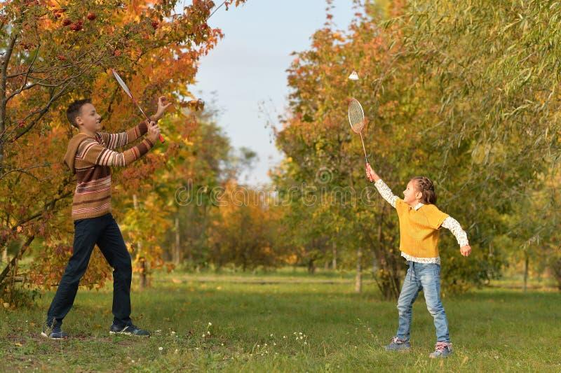 Syskongrupp som spelar badminton i höstskog royaltyfri fotografi