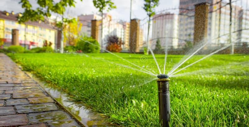 Système d'arrosage automatique arrosant la pelouse sur un fond d'herbe verte images stock