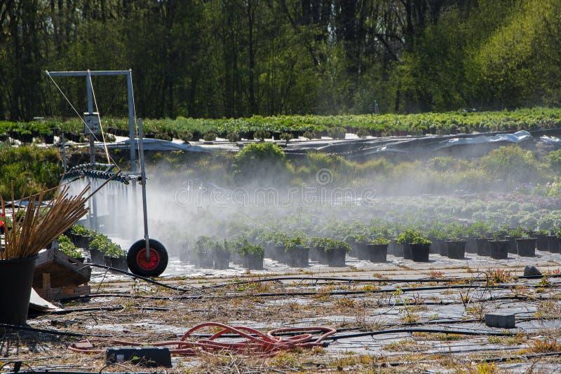 Système d'irrigation extérieur utilisé pour arroser les usines mises en pot dedans photographie stock