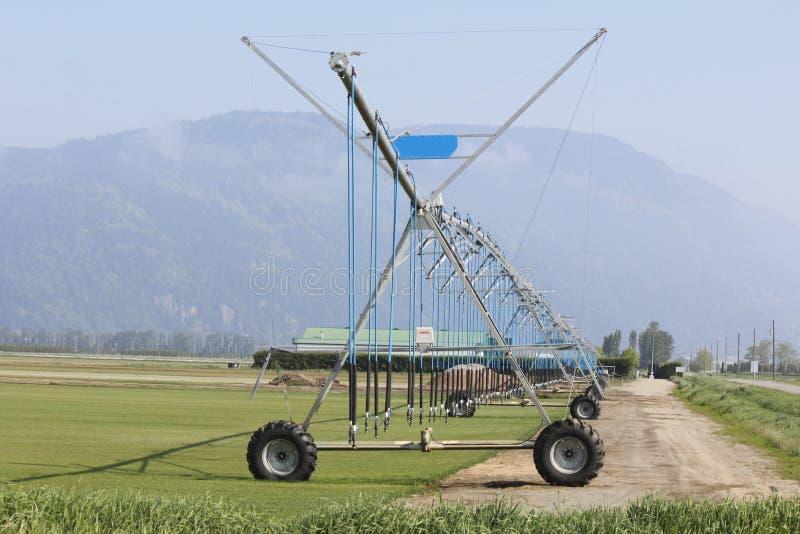 Système d'irrigation pour le gazon croissant photos stock