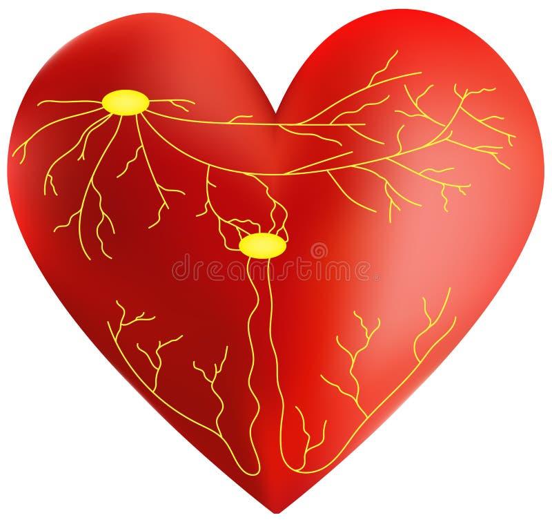Système de conduite du coeur illustration stock