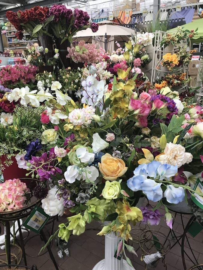 Système de fleur Les fleurs lumineuses et les plantes vertes se tiennent emballées dans des pots sur des étagères et des plateaux photographie stock