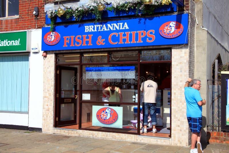 Système de poissons et de puce photos libres de droits