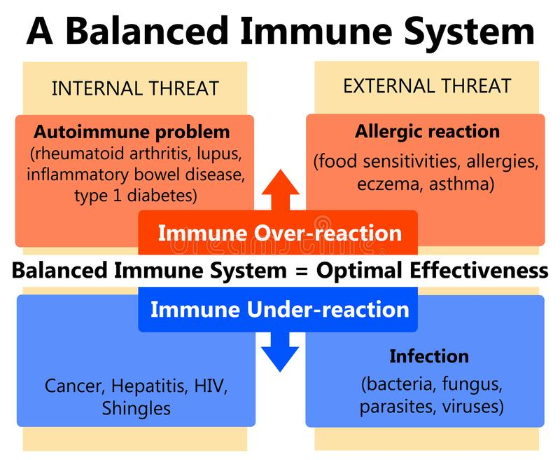 Système immunitaire illustration stock