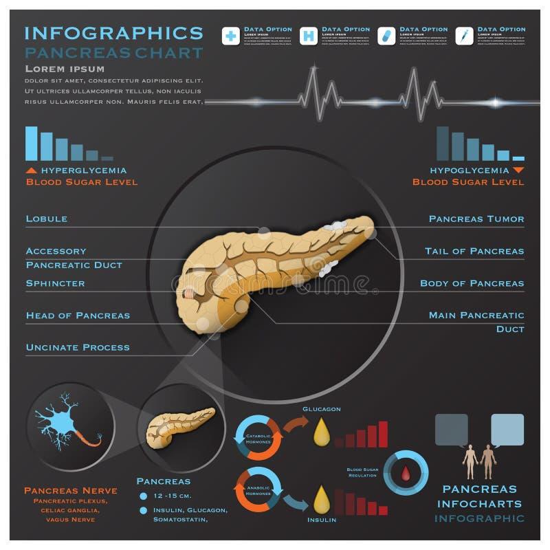 Système Infographic médical Infochart d'anatomie de pancréas illustration libre de droits