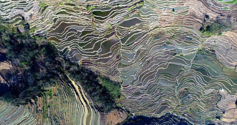 Systèmes agricoles globalement importants d'héritage image libre de droits