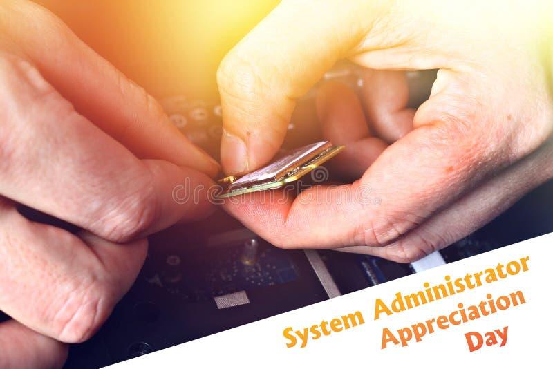 Systeembeheerder Appreciation Day Prentbriefkaar voor de vakantie De kerel bevestigt laptop stock foto's