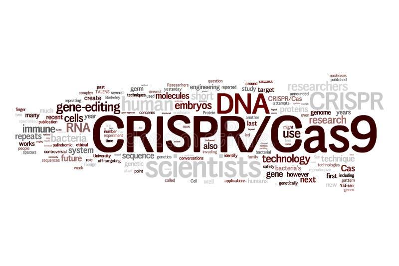 System CRISPR/Cas9 für das Redigieren, das Regulieren und das Anvisieren von Genomen (Biotechnologie und Gentechnik) fassen Wolke lizenzfreie abbildung