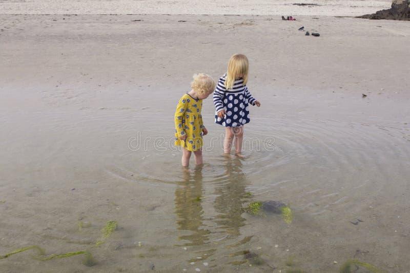 Systrar undersöker den naturliga världen tillsammans royaltyfria foton