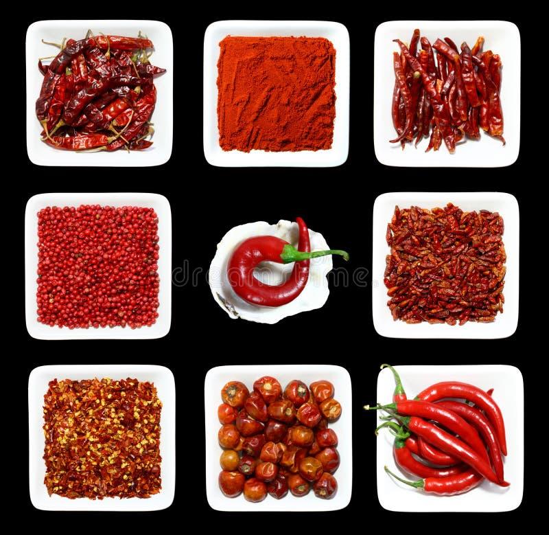 szablony czerwone przyprawa białe obrazy stock