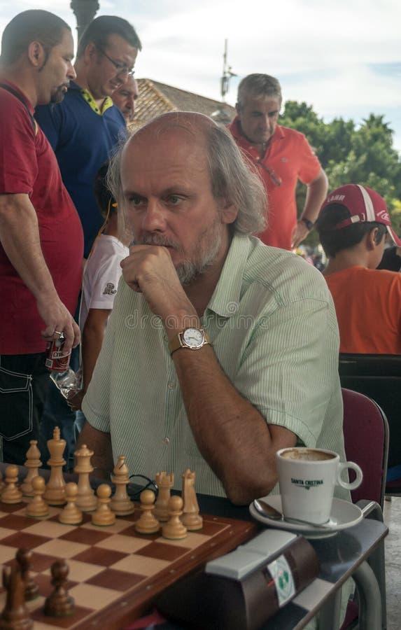 Szachowa grandmaster Suart konkieta obraz royalty free