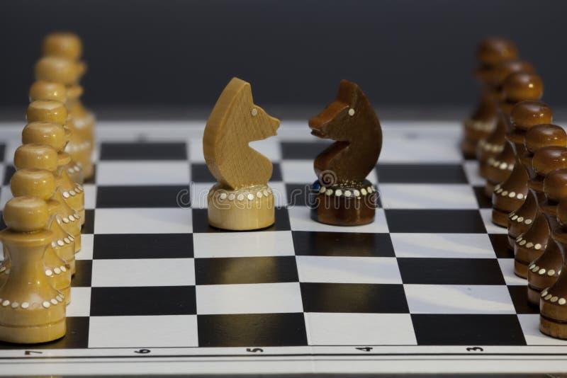 Szachowa rycerz konfrontacja konfrontacyjna obraz stock