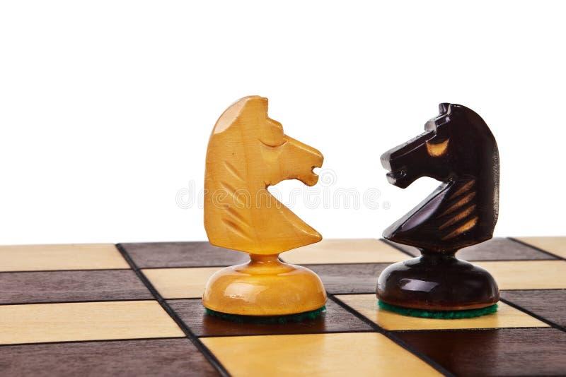 szachowe postacie rycerz dwa fotografia royalty free