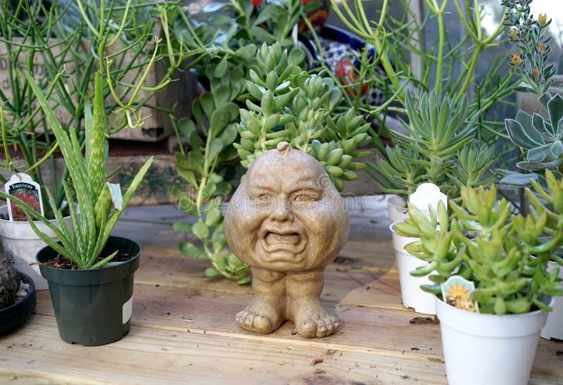 Szalenie bani głowy plantator zdjęcie stock