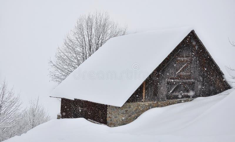 szaletu śnieg obrazy royalty free