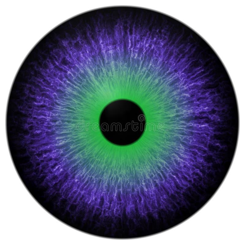 Szalony purpurowy zielony oko 3d odizolowywał białego tło ilustracja wektor