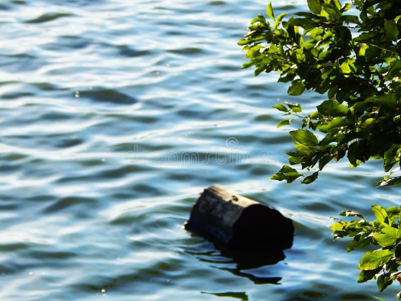Szalunek na wodzie niebo słońce Jezioro zdjęcia royalty free