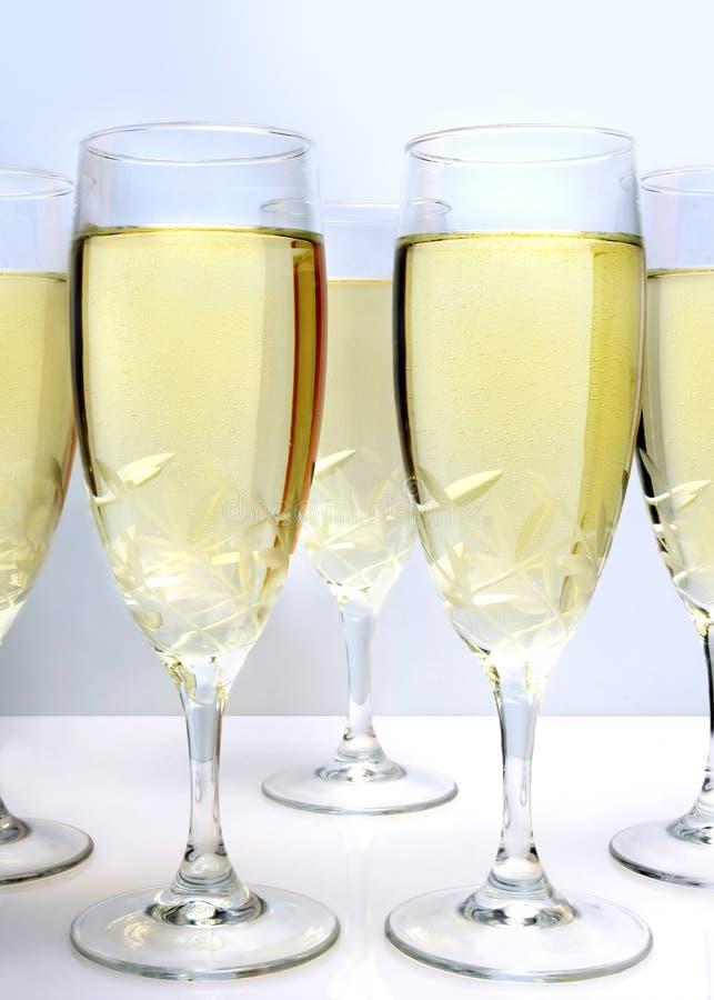 szampan białe tło obrazy stock