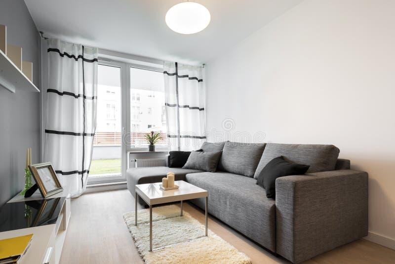Szara kanapa w nowożytnym żywym pokoju fotografia royalty free