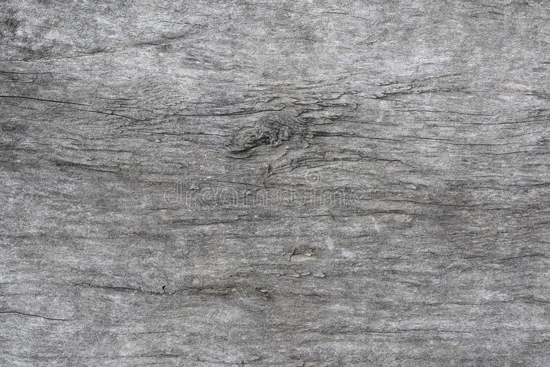 Szara tekstura stary drzewny zakończenie zdjęcia royalty free
